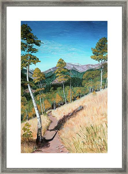 Kenosha Pass - Colrado Trail Framed Print