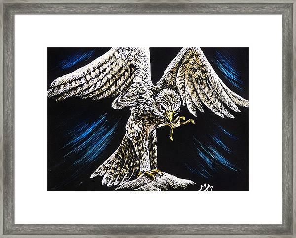 Kestrel Framed Print