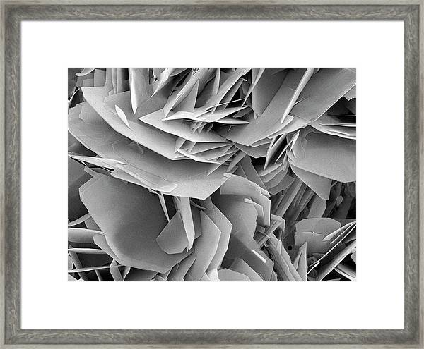 Kidney Stone Crystals Framed Print by Steve Gschmeissner/science Photo Library