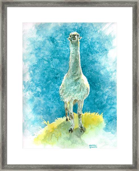 King Of The Hill Framed Print