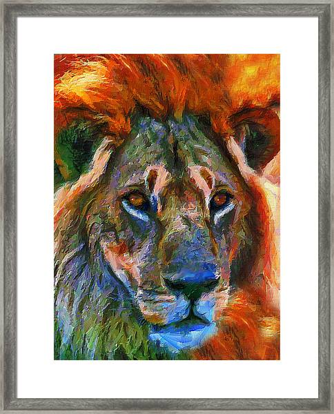 King Of The Wilderness Framed Print