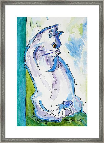 Kitty On Alert Framed Print