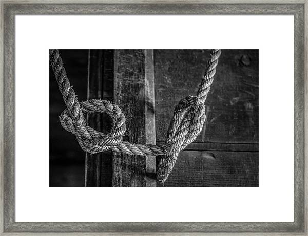 Framed Print featuring the photograph Knots by Steve Stanger