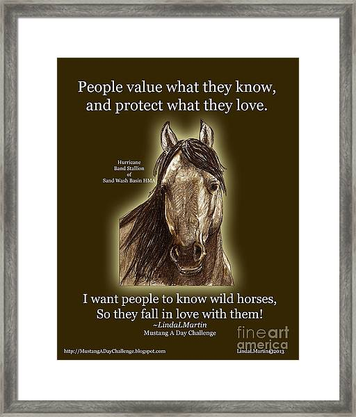 Know Wild Horses Poster-huricane Framed Print