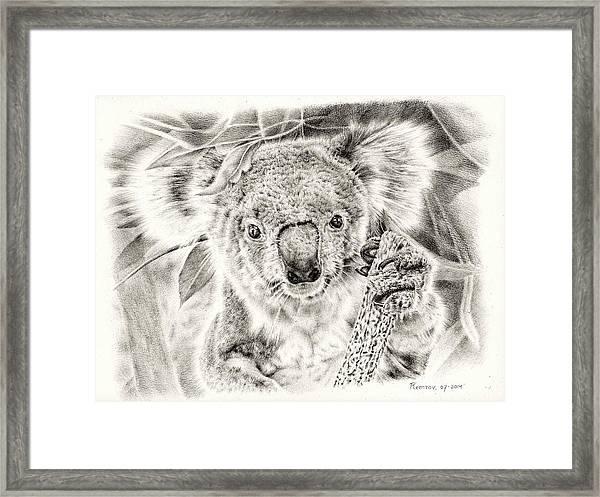 Koala Garage Girl Framed Print