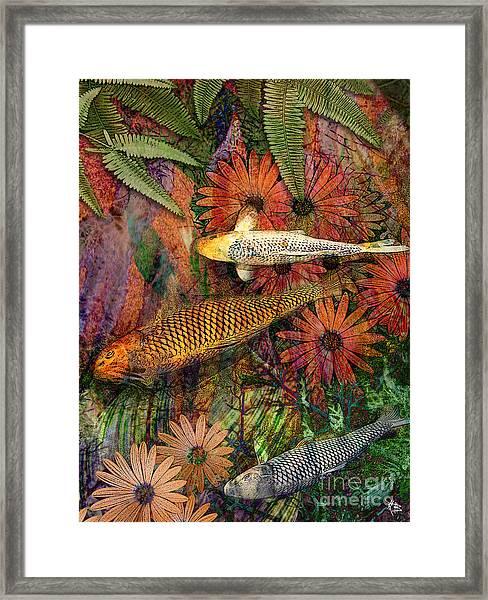 Kona Kurry Framed Print