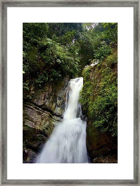 La Mina At El Yunque Framed Print