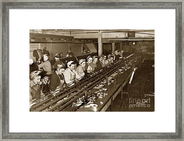 Ladies Packing Sardines In One Pound Oval Cans In One Of The Over 20 Cannery's Circa 1948 Framed Print