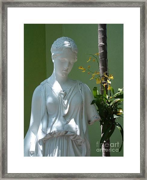 Lady In Garden Framed Print