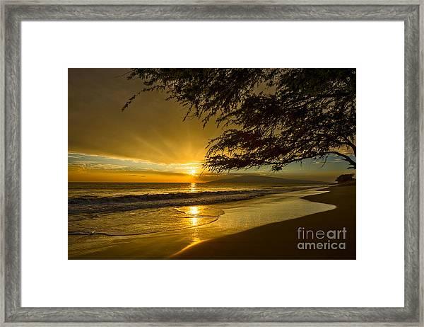 Lahaina Sun Burst Framed Print