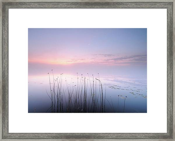 Lake Framed Print by