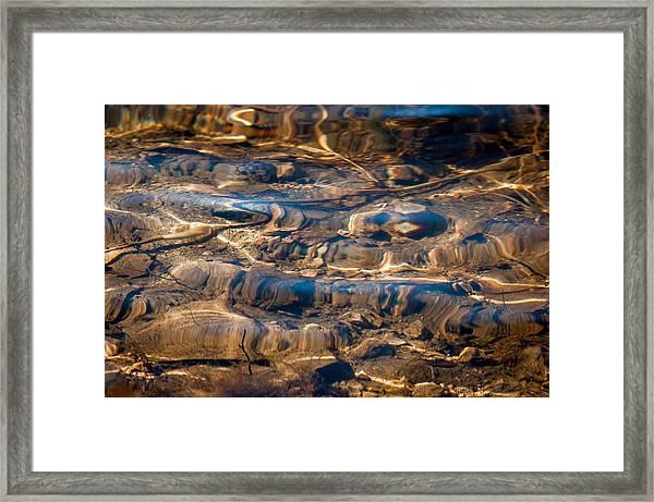 Lake Bottom Framed Print