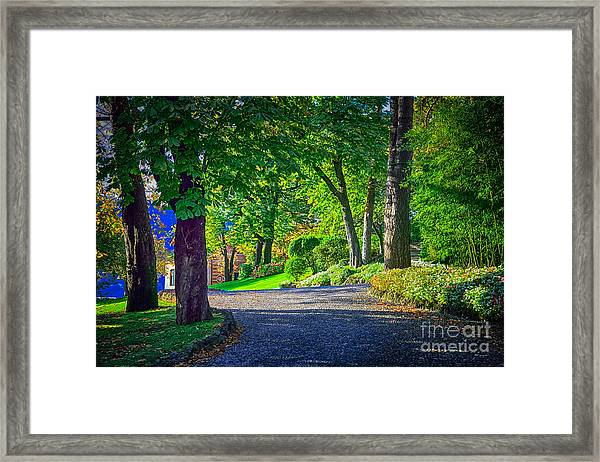Lake Como Path Framed Print