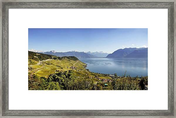 Lake Geneva Vineyards Framed Print