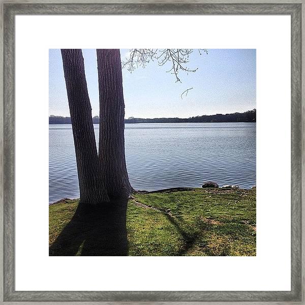 Lake In The Summer Framed Print
