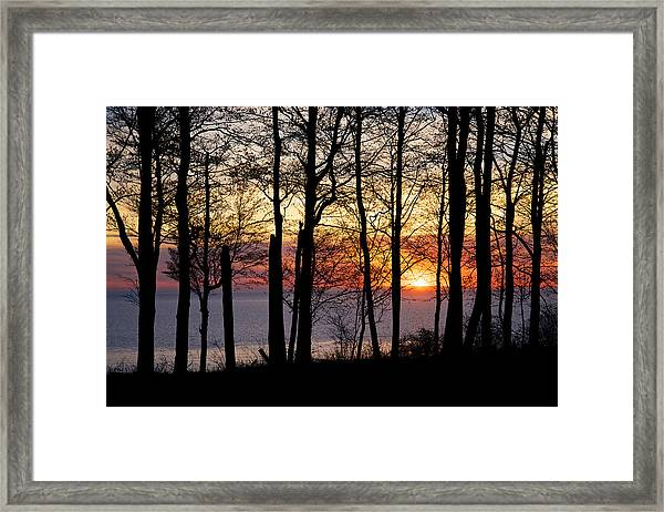 Lake Michigan Sunset With Silhouetted Trees Framed Print