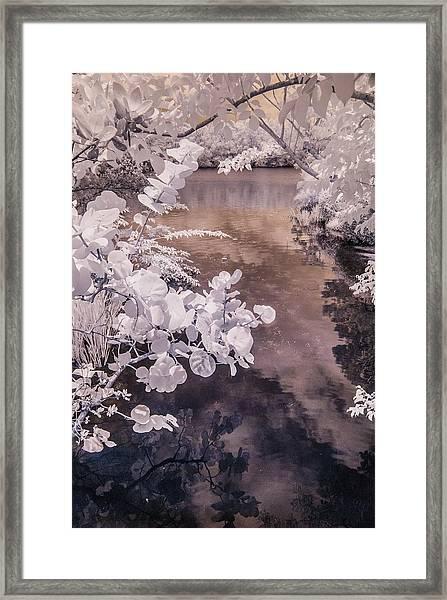 Lake Shadows Framed Print