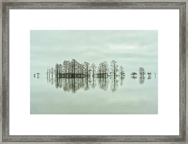Lake-shore Lineup Beauty Framed Print