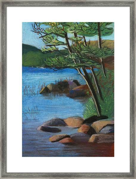 Lakeside Pines Framed Print by Jane Croteau