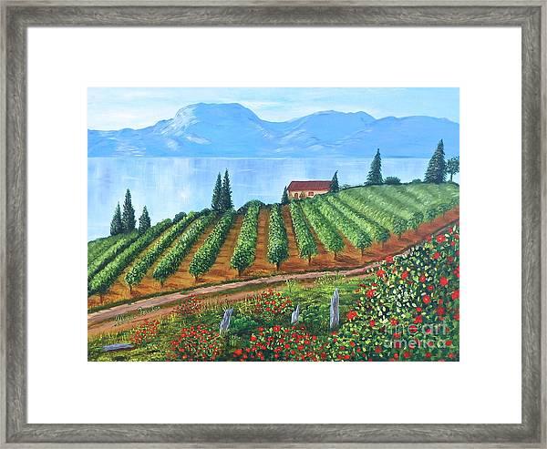 Lakeside Vineyard Framed Print