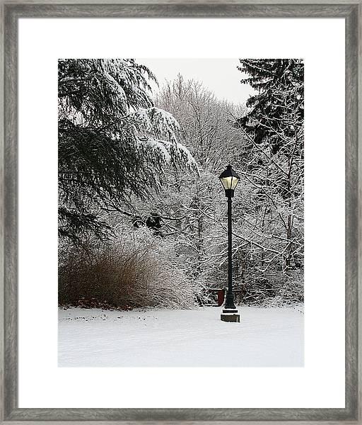 Lamp Post In Winter Framed Print