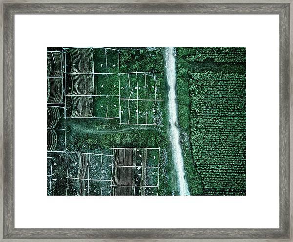 Land Of Idyllic Beauty Framed Print by Zhou Chengzhou