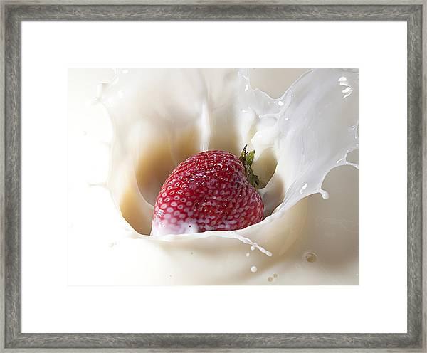 Land Of Milk And Honey 10 Framed Print