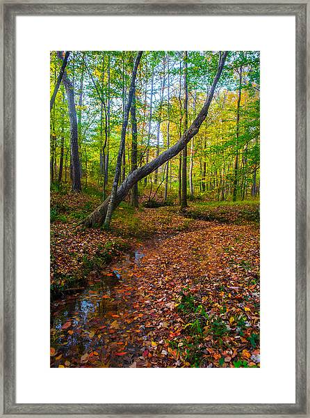Land Of The Fairies Framed Print