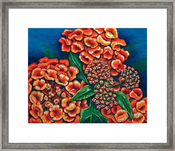 Lantana Framed Print