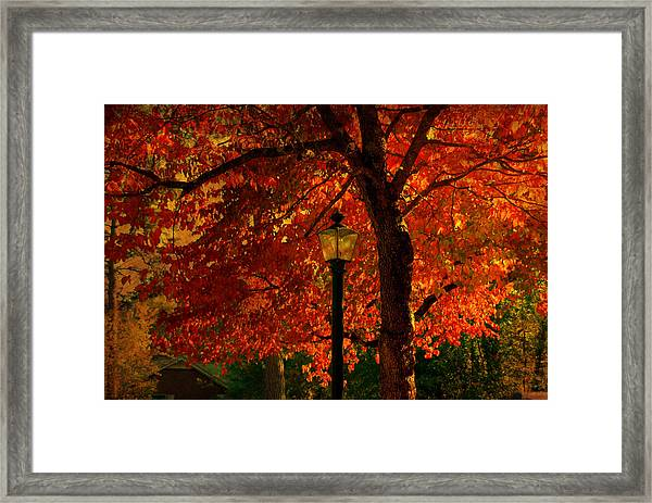 Lantern In Autumn Framed Print