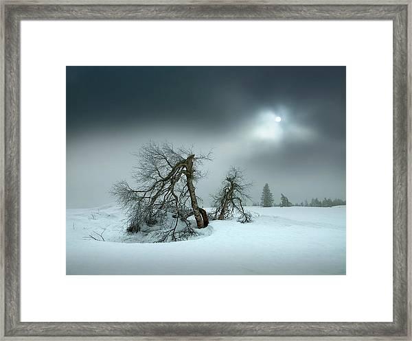 Last Days Of Winter Framed Print