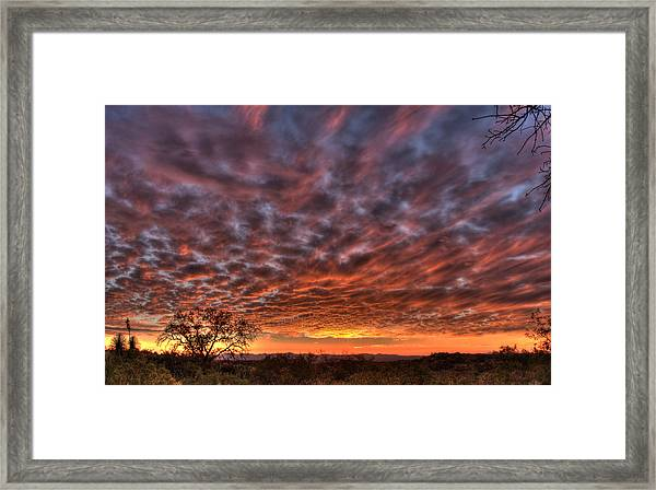 Last Light In Oracle Framed Print