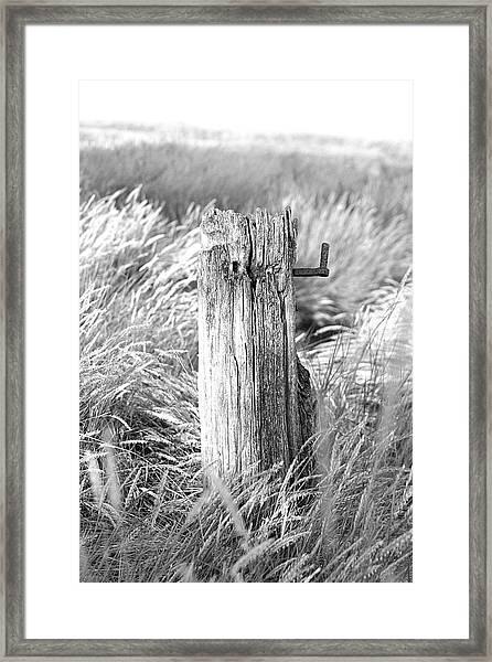 Last Post Framed Print