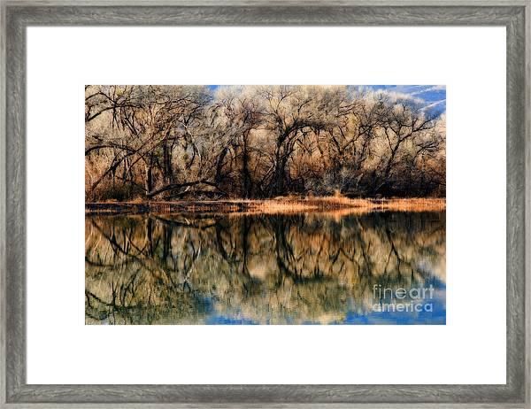 Late December Reflection At Dead Horse Framed Print