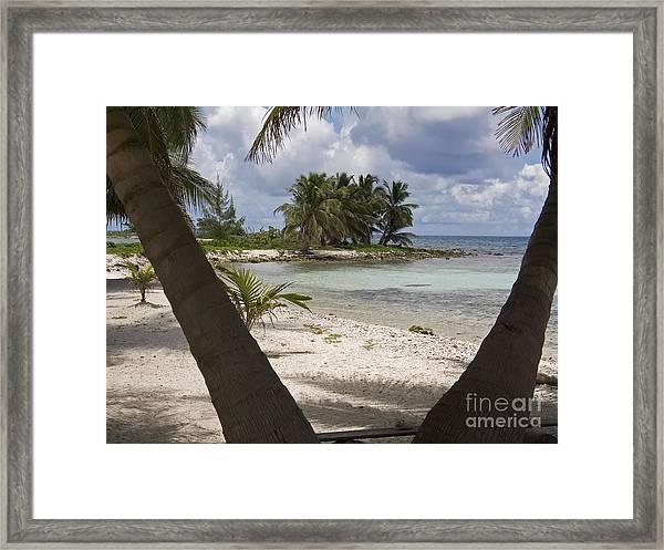 Laughing Bird Caye Framed Print