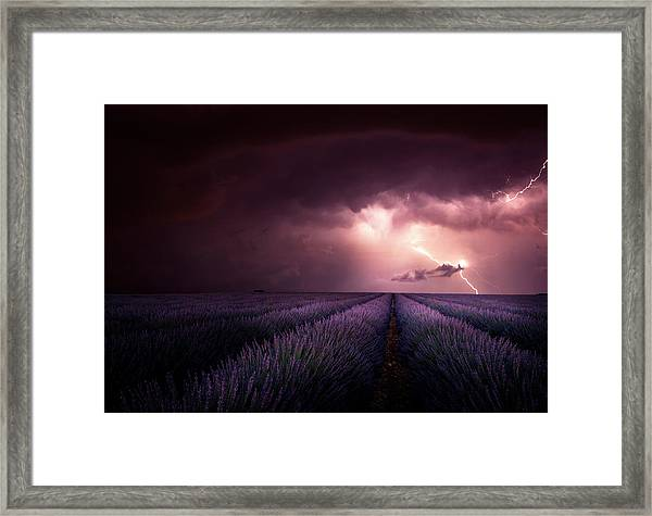 Lavender Fragrance Framed Print