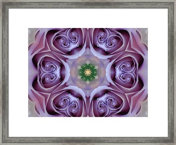 Lavender Rose Mandala Framed Print