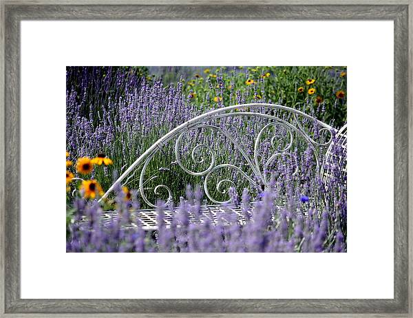 Lavender With Scrolled Settee Framed Print