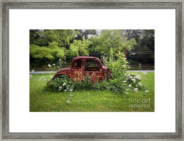 Lawn Ornament Framed Print
