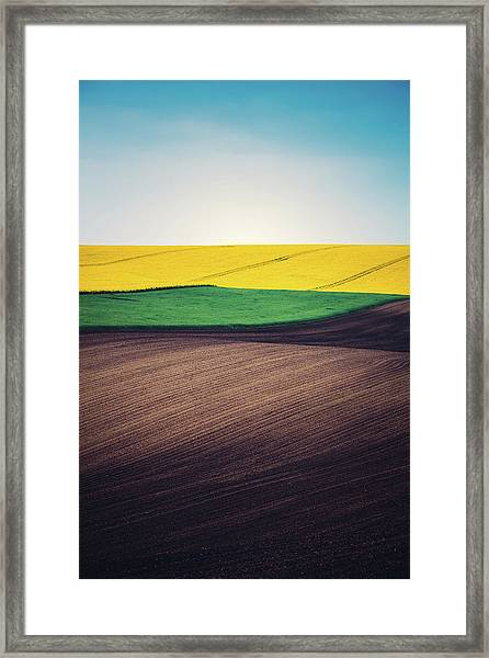 Layers Of Colorful Field Framed Print