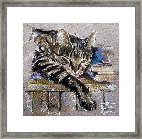 Lazy Cat Portrait - Drawing Framed Print