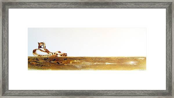 Lazy Dayz Cheetah - Original Artwork Framed Print