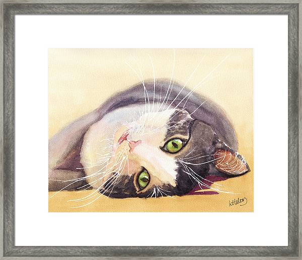 Lazy Kitty Framed Print