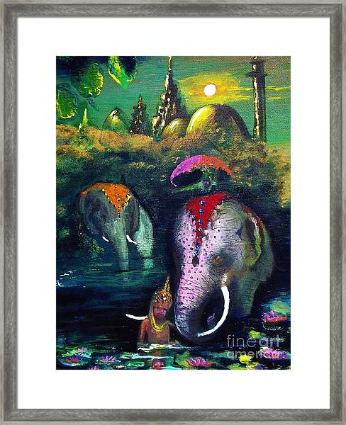 Leading The Way Framed Print by Donna Chaasadah