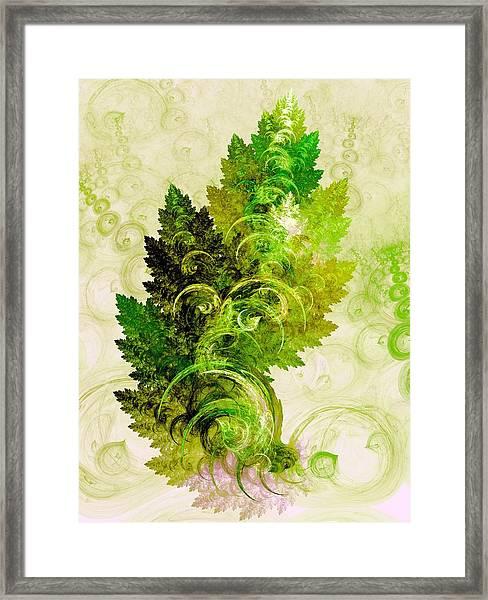 Leaf Reflection Framed Print