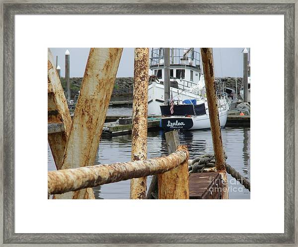 Lealea In Harbor Framed Print