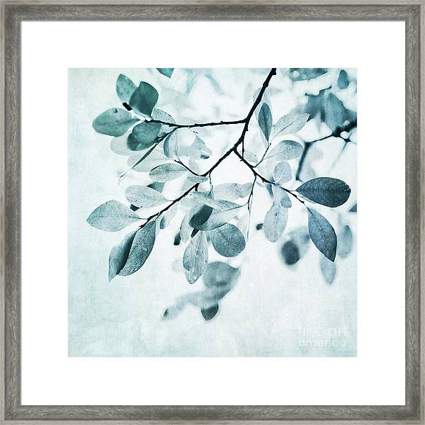 Leaves In Dusty Blue Framed Print