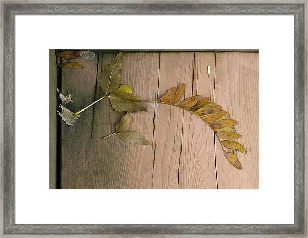 Leaves On A Wooden Step Framed Print