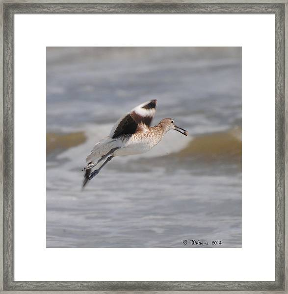 Leaving With Breakfast Framed Print