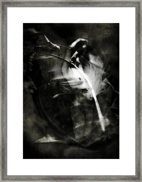 Leda And The Swan Framed Print